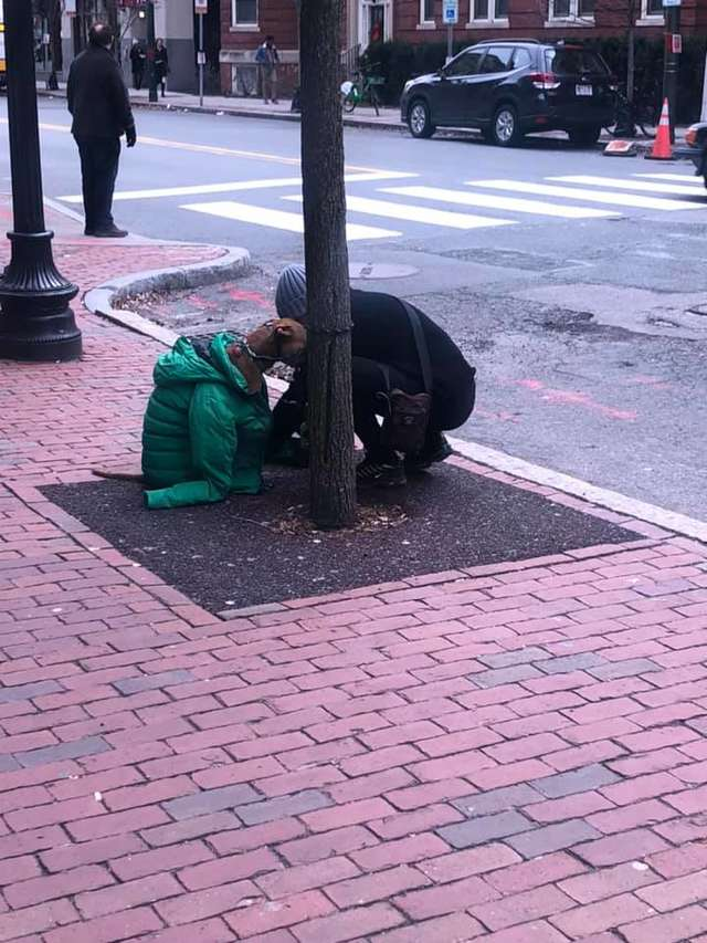 kind-woman-gives-her-own-jacket-to-shivering-dog-waiting-outside-the-post-office-03