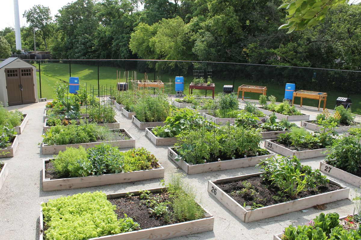 Dreaming of summer? Apply for a plot at Niles community garden through March 20 - Chicago Tribune